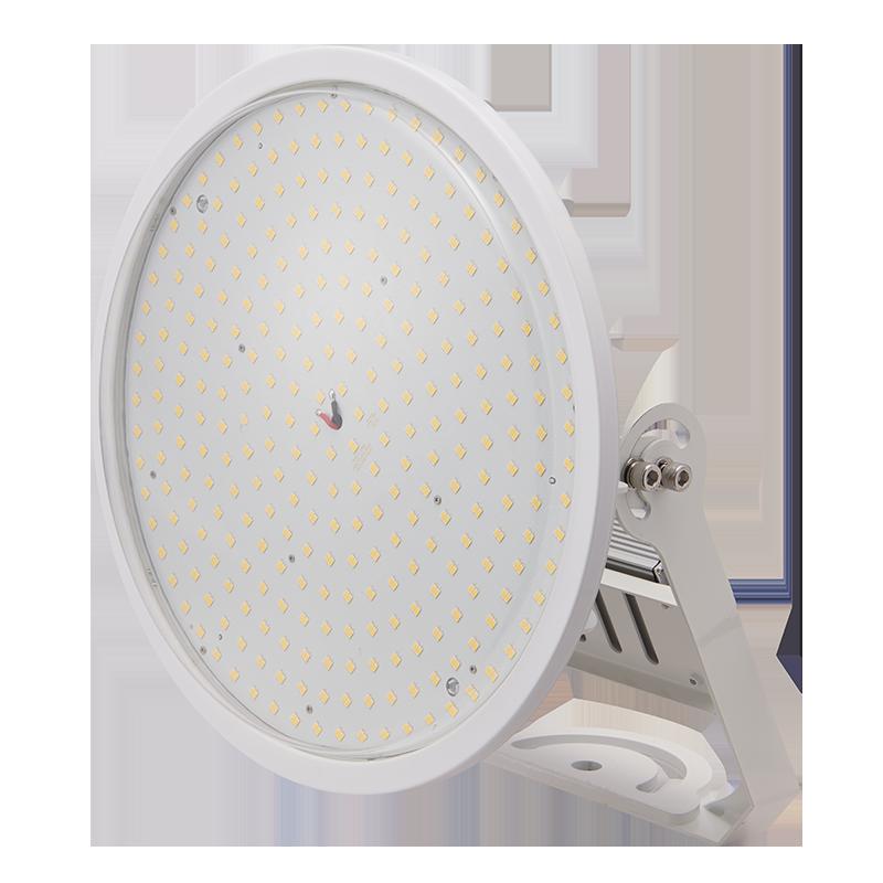 CORE 1000投光器型(透明)