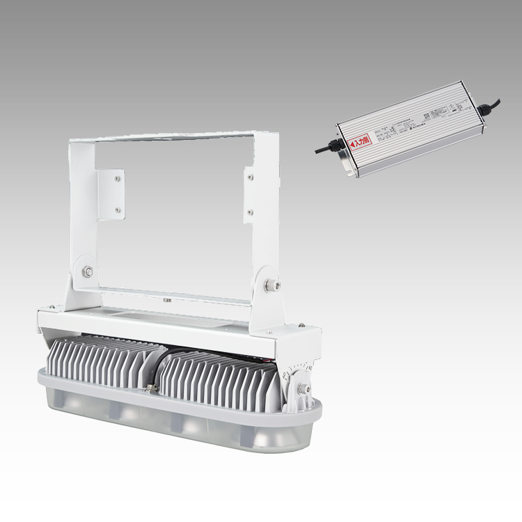 大型LED 1000 重耐塩直付け型(透明)